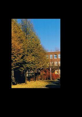Ein Herbsttag in Karnap