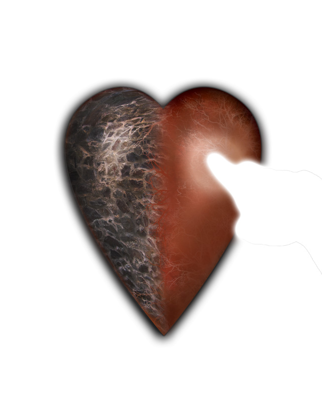 Ein Herz aus Fleisch zu Stein