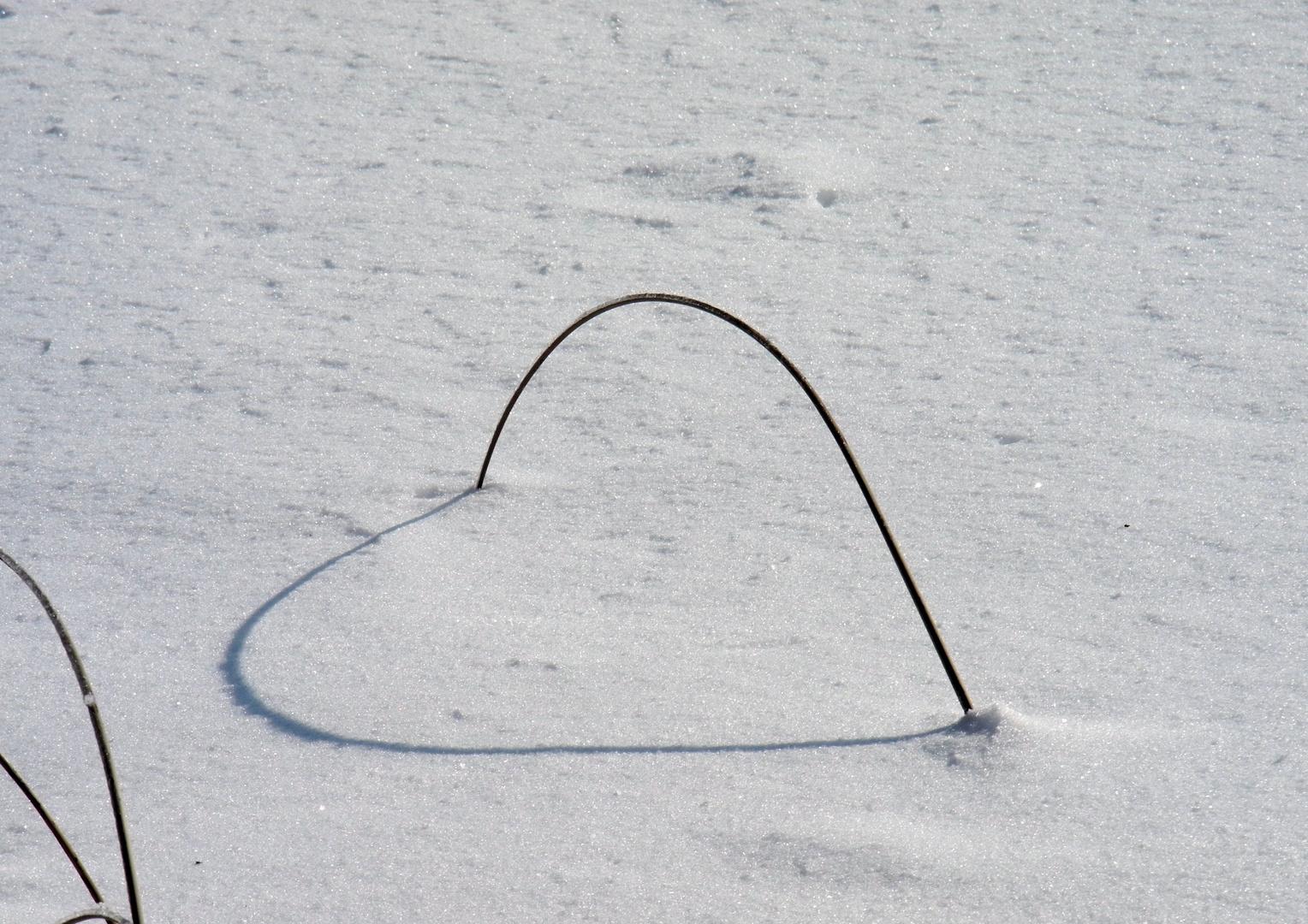Ein Herz in der Natur