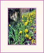... ein HERZlicher Frühlingsgruß ...