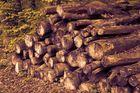 Ein Holzhaufen....