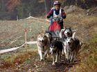 Ein Hunderennen im mystischen geheimnisvollen Waldviertel ------ Part 4