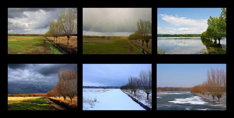 Ein Jahr Oderwiesen