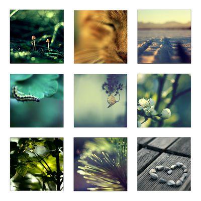 Ein Jahresrückblick - 2011