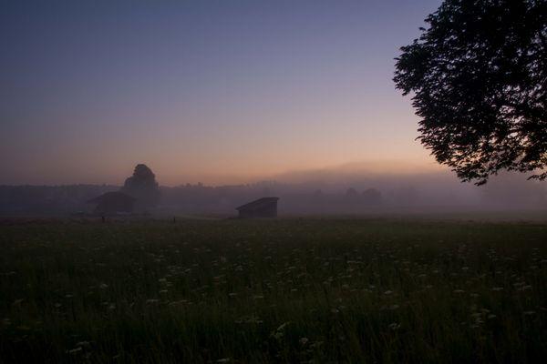 Ein Juni-Nebel-Morgen
