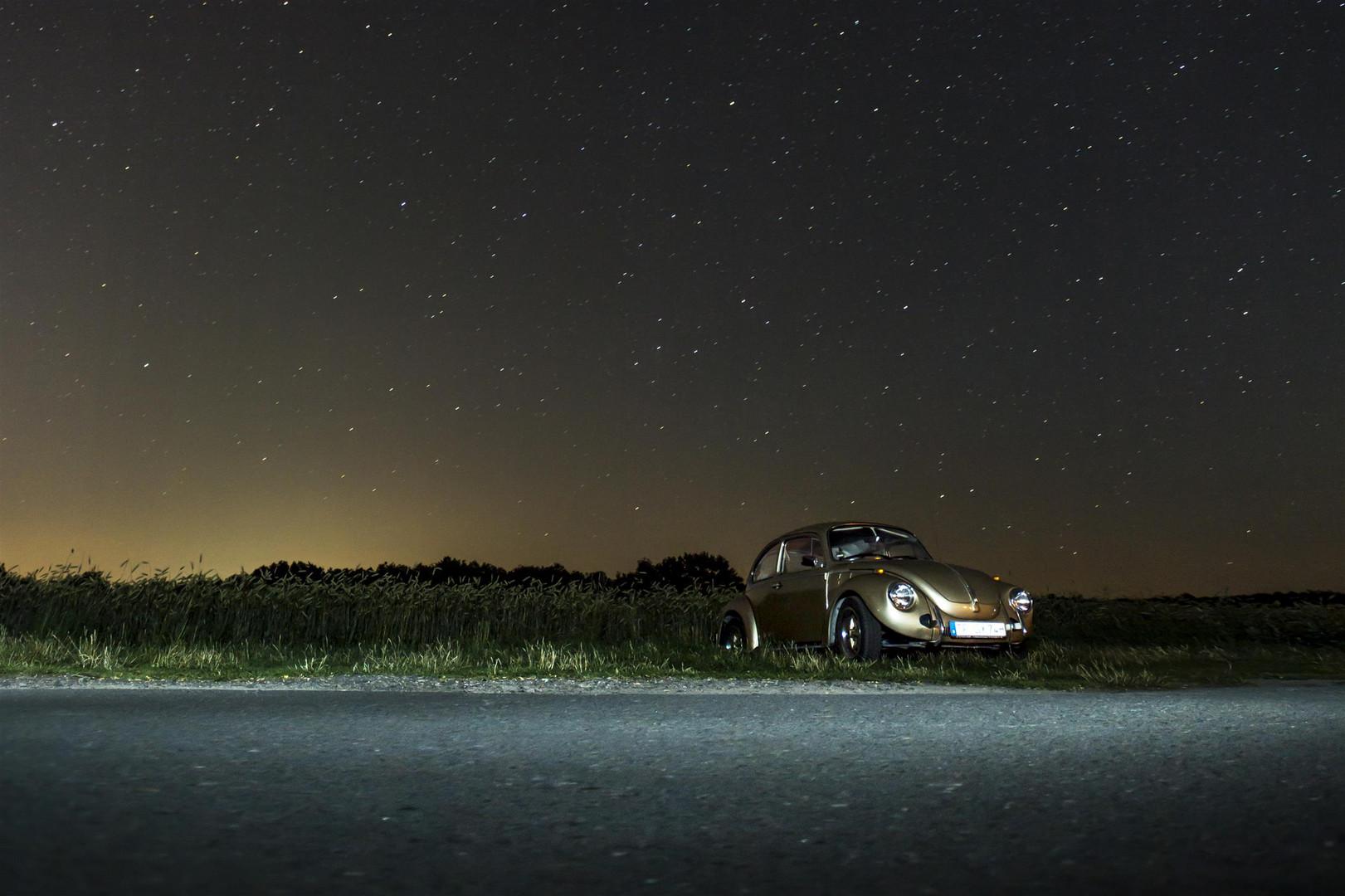 Ein Käfer bei Nacht