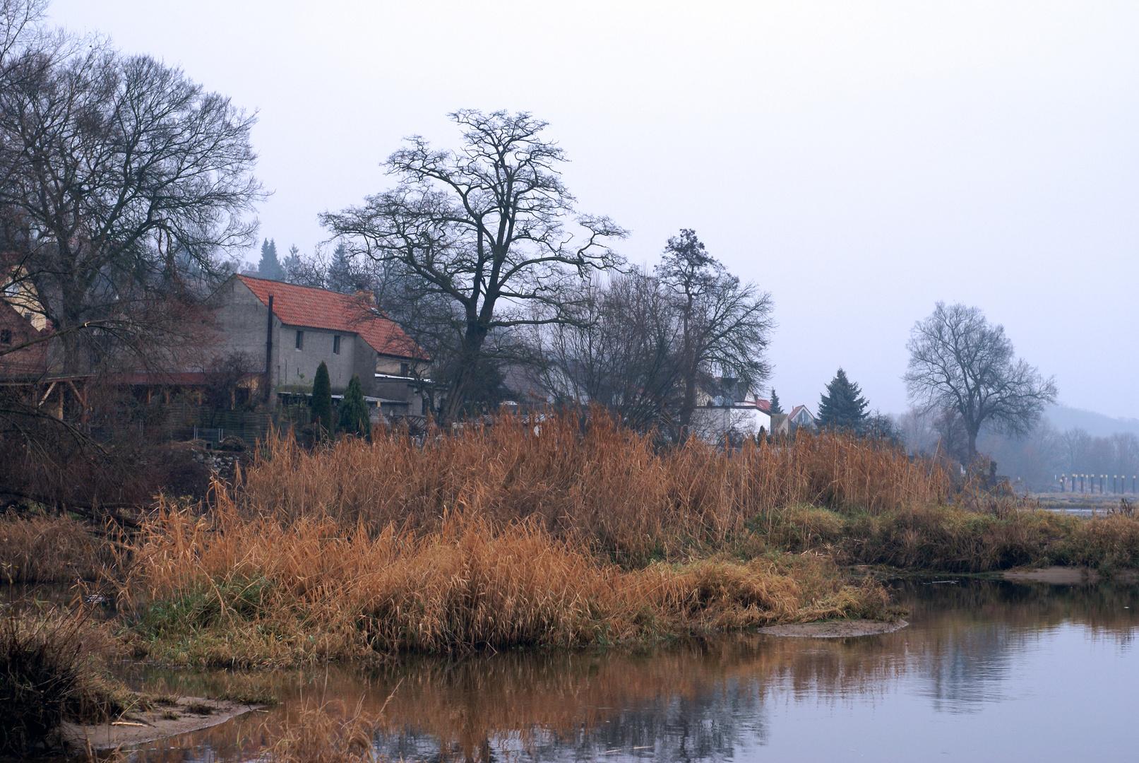 ein kalter, grauer Herbsttag an der Oder