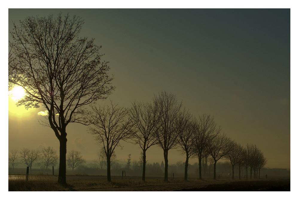 Ein kalter morgen