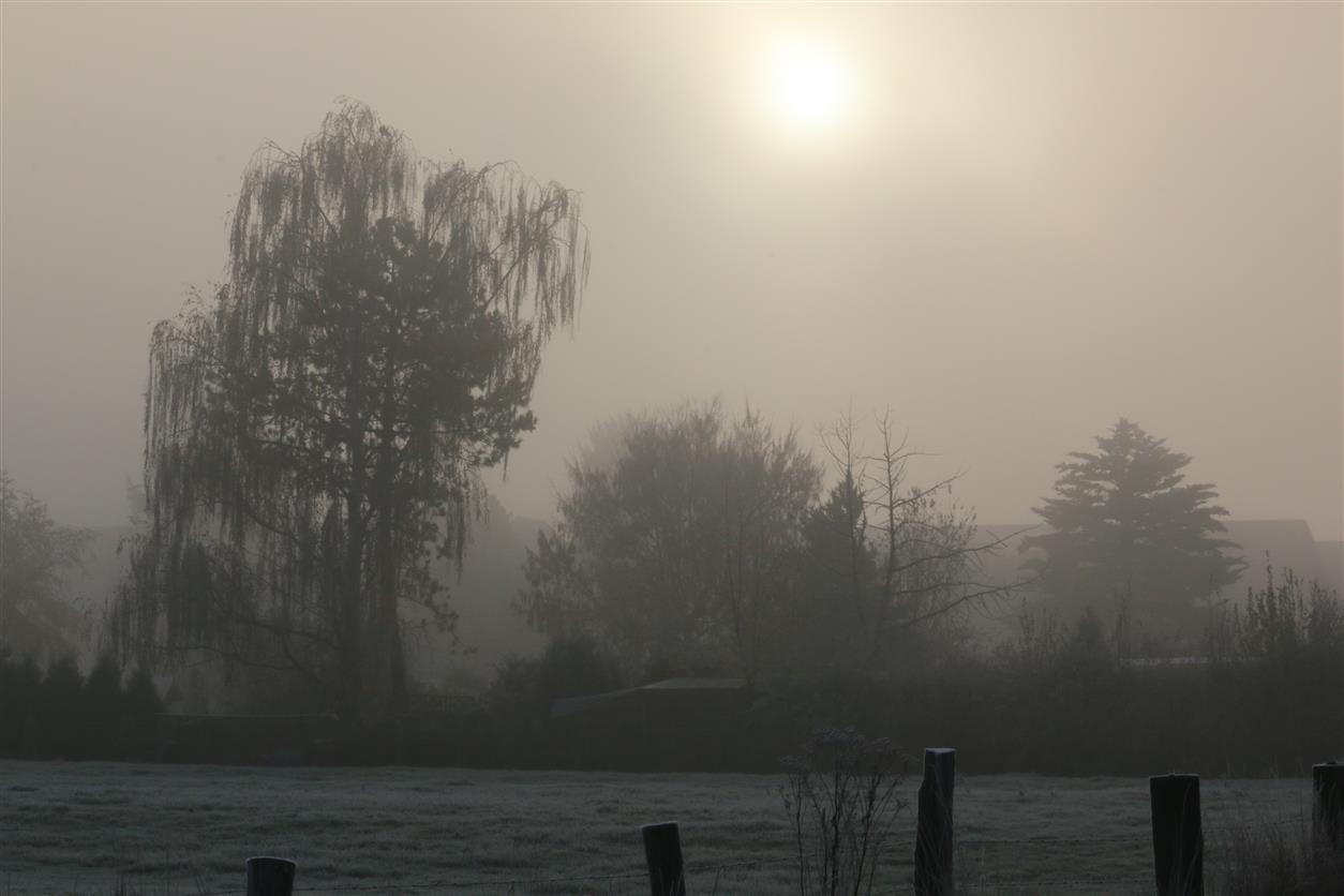 Ein Kalter Morgen....