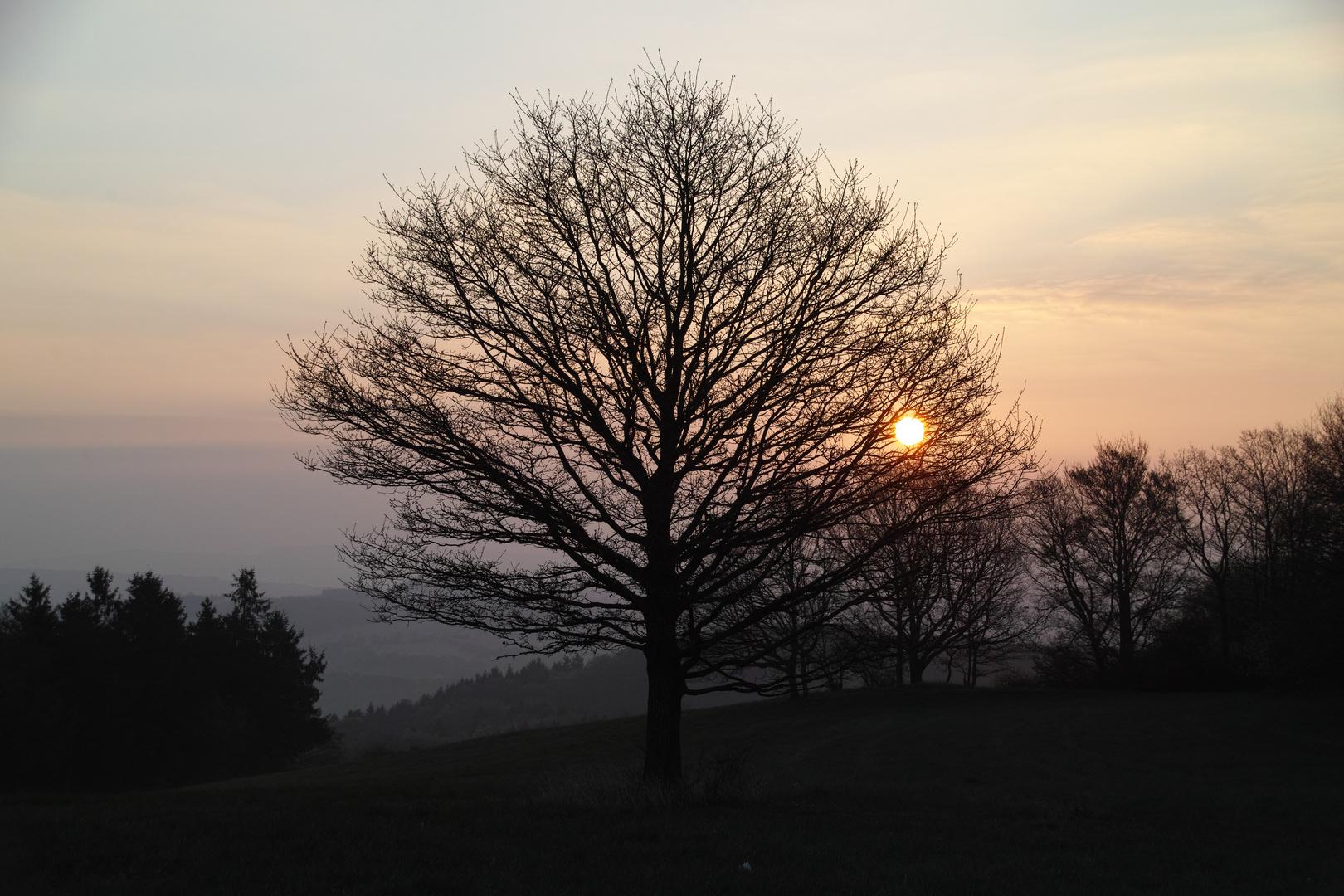 ein kalter Morgen im April