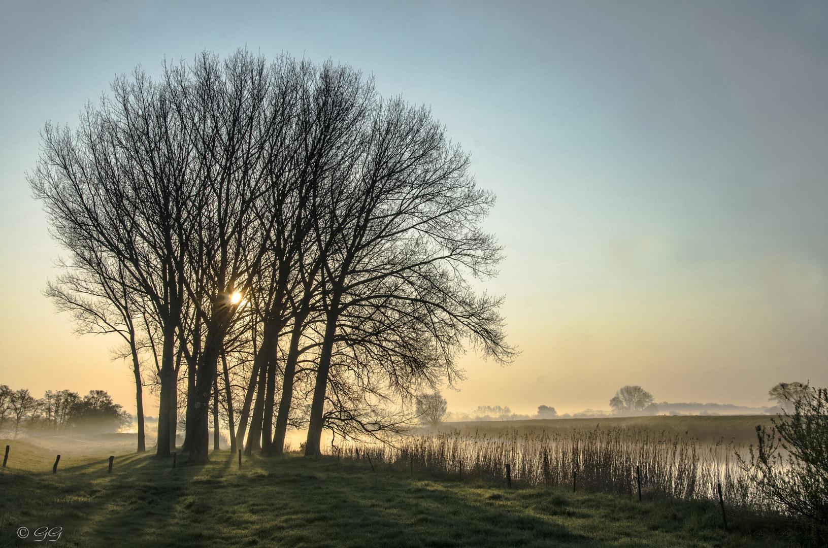 Ein kalter Morgen im Außendeich
