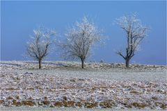 Ein kalter Wintertag