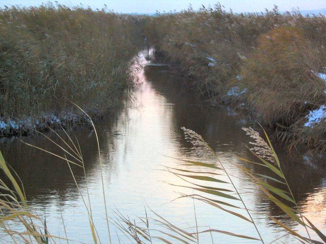 ein kanal am neusiedlersee