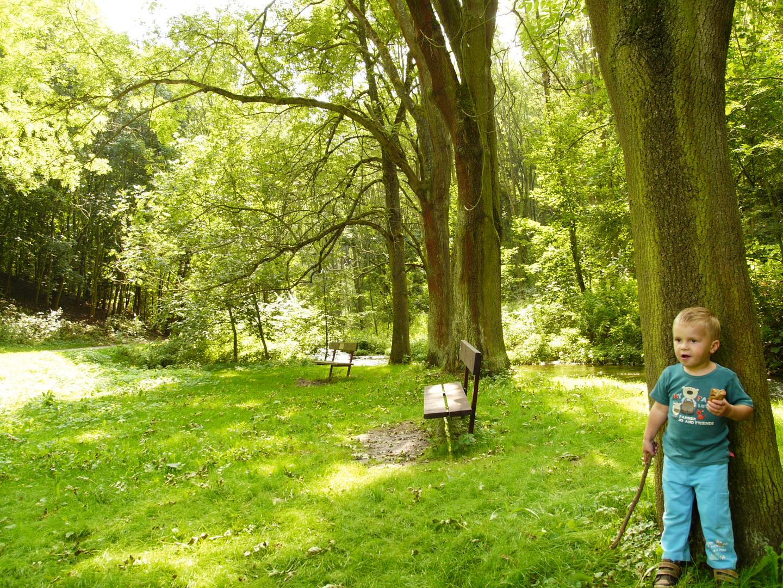 ein Kind beim Baum