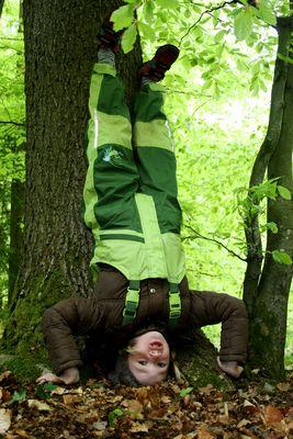 """ein kleiner """"Baum""""..."""