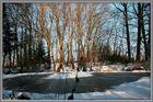 ein kleiner See wird zur Eisbahn