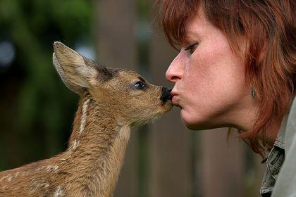 Tier und Mensch