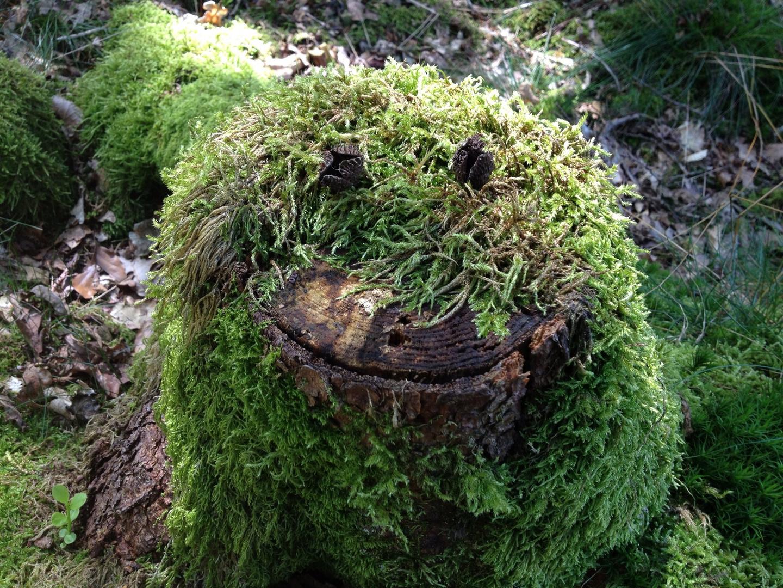 Ein Lächeln :-)