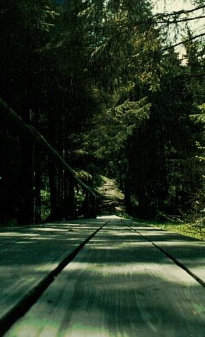 Ein langer hölzerner Weg...