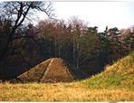 Ein letzter Gruss aus dem Herbst in Branitz (9)