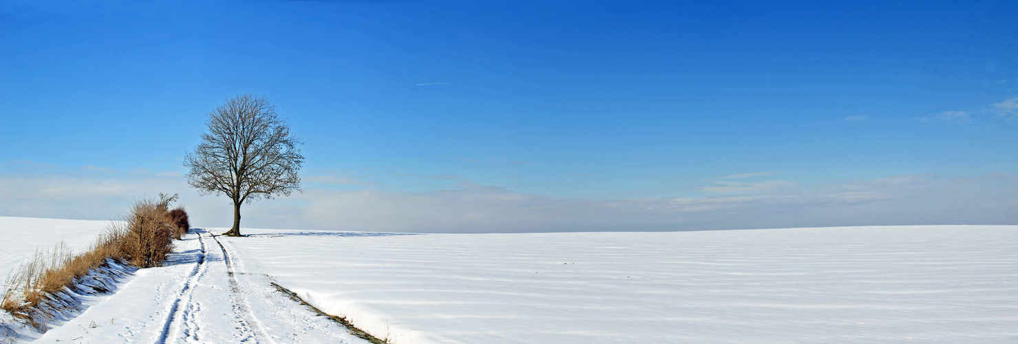 ein letztes Winterpanorama