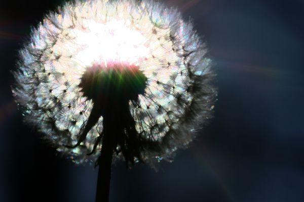 Ein Licht für euch.....
