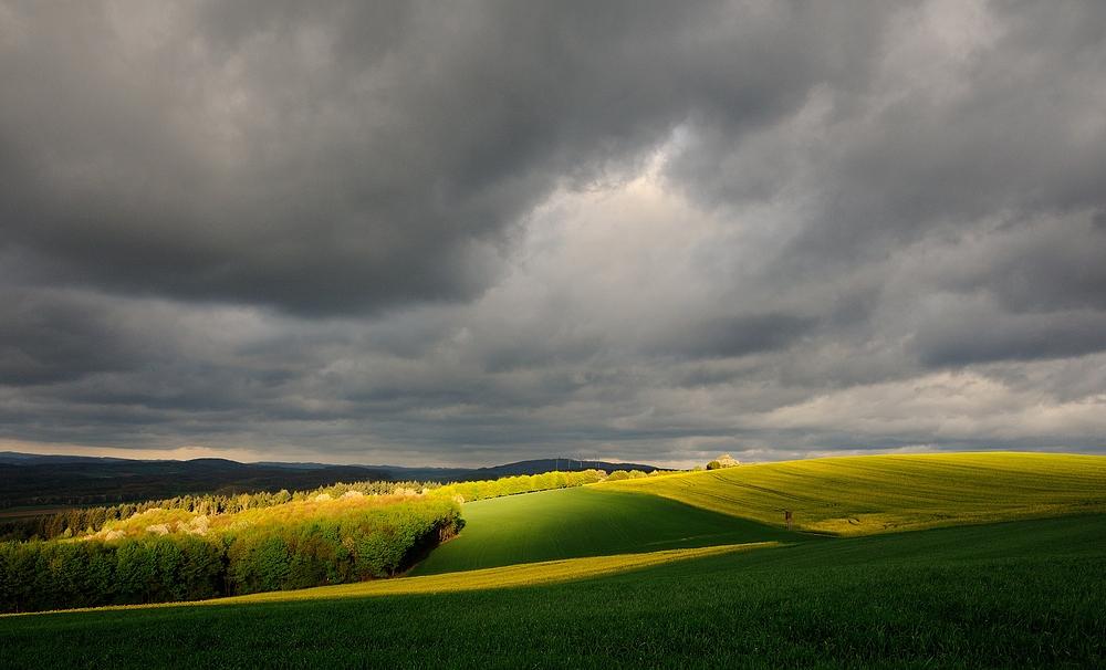 Ein lichter Moment in der Pfalz, heute um 8 Uhr bei 70 km/h Windgeschwindigkeit. Solche ...