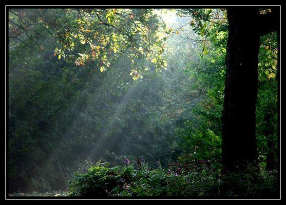 Ein Lichtstrahl ...