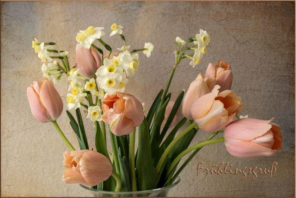 Ein lieber Frühlingsgruß