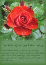 Ein lieber Gruß zum Valentinstag