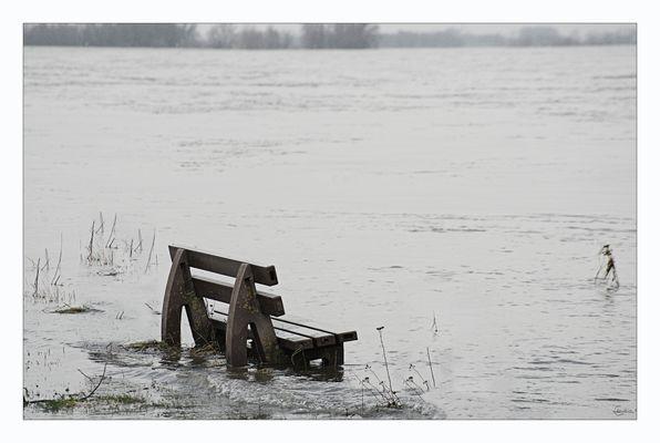 Ein Logenplatz zum Hochwassergucken