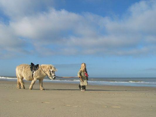Ein Mädchen mit Pferd an See Wadden-Vlieland Niederland