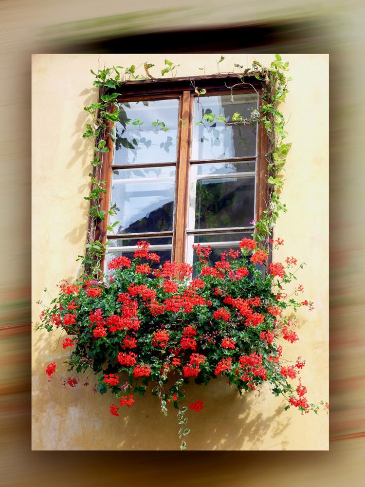 Ein malerisches Fenster