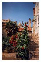 Ein malerisches Plätzche in der Stadt Krk