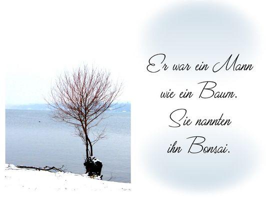 """""""Ein Mann wie ein Baum"""""""