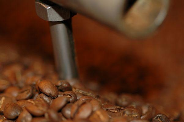 ein Meer von Kaffeebohnen (5)