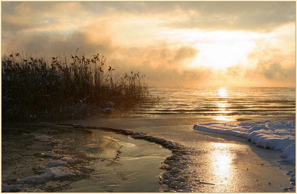 Ein Morgen am Ammersee