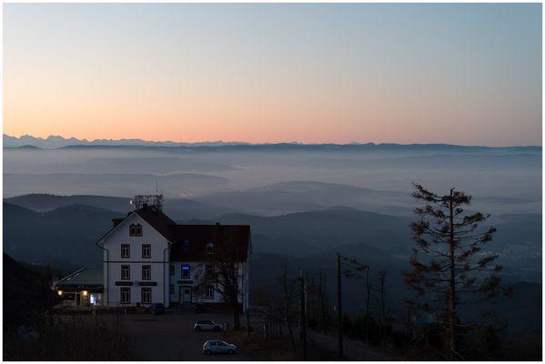 Ein Morgen auf dem Hochblauen (Badenweiler) II