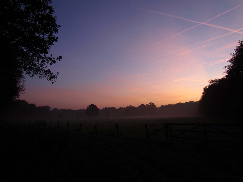 ein Morgen erwacht
