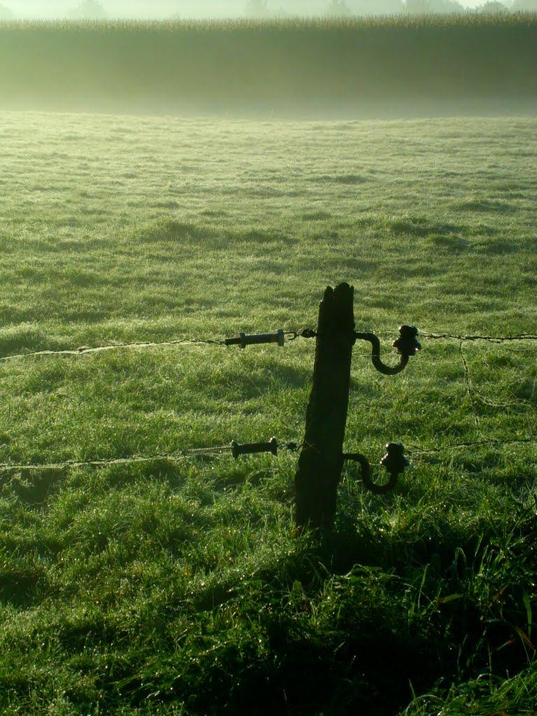 Ein Morgen im Artland