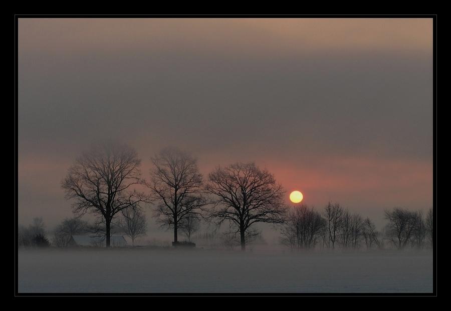 Ein Morgen im März