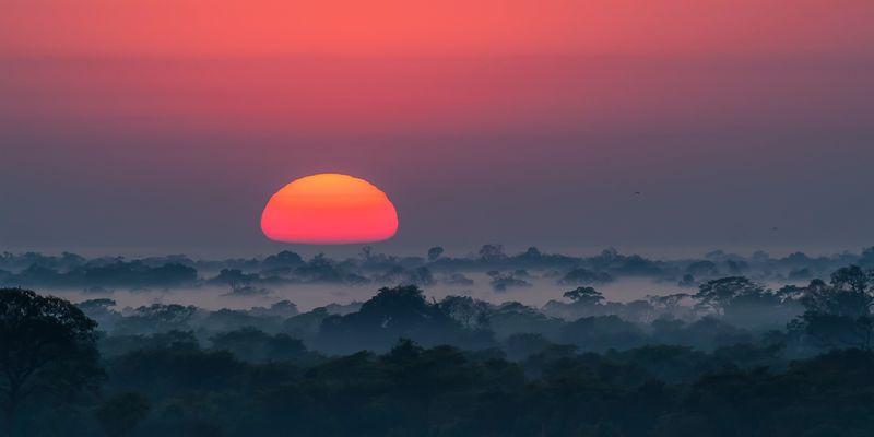 Ein Morgen im Pantanal