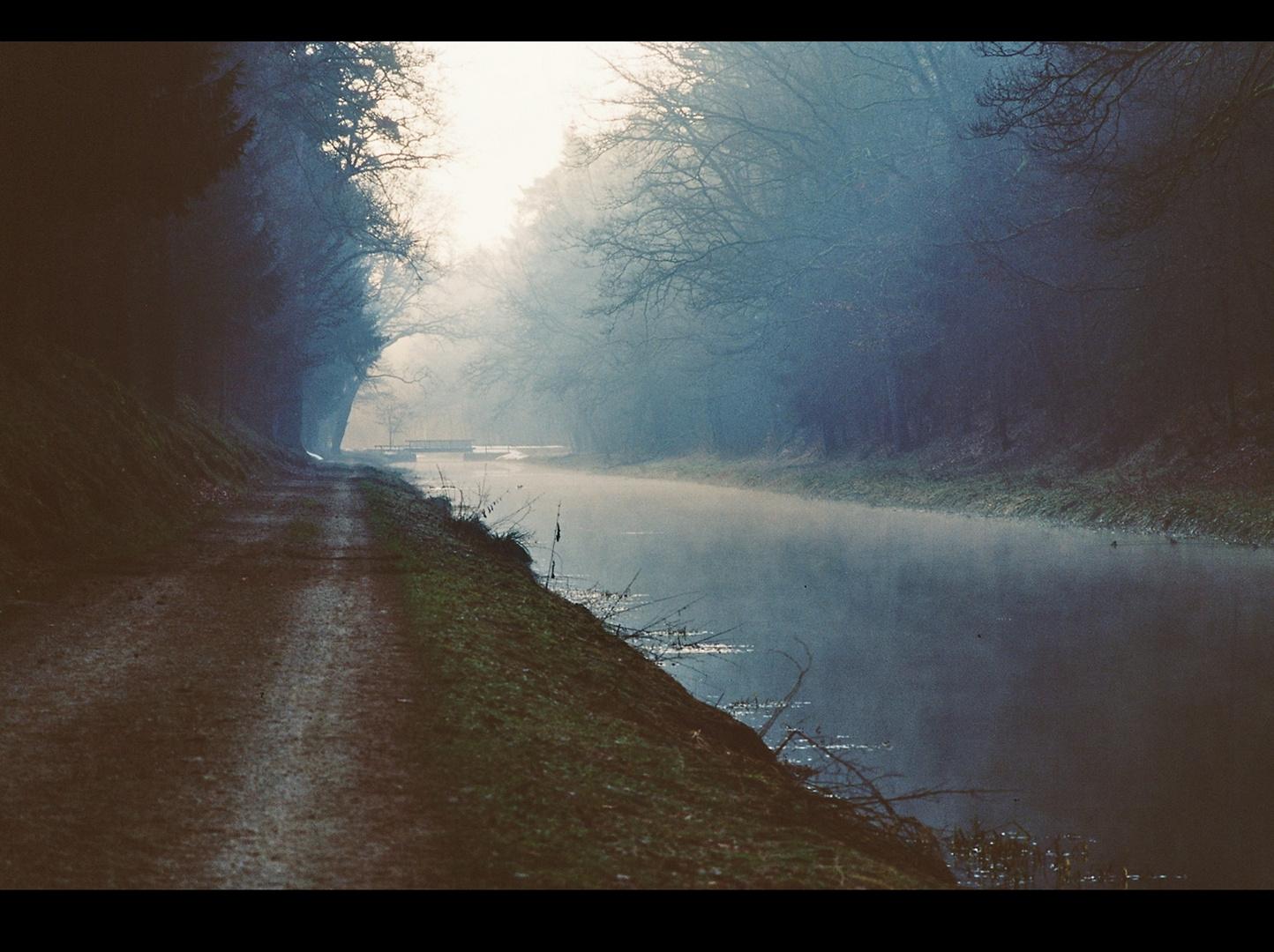 Ein Morgenspaziergang am Ludwig-Main-Donau Kanal (I)