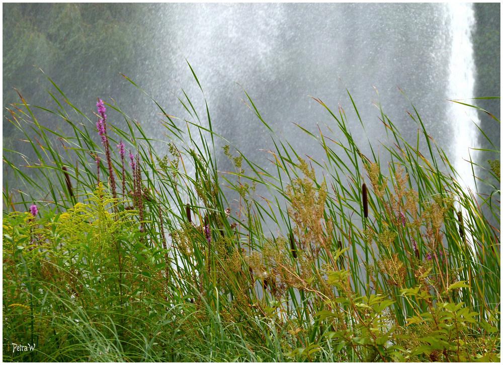 Ein Nachmittag in Planten un Blomen, Hamburg - Wasserspiele