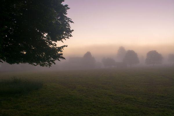 Ein Nebel-Morgen im Juni 2016