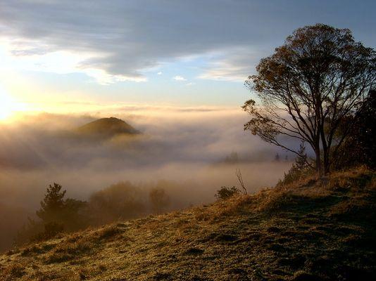 Ein nebeliger Start in Wanganui