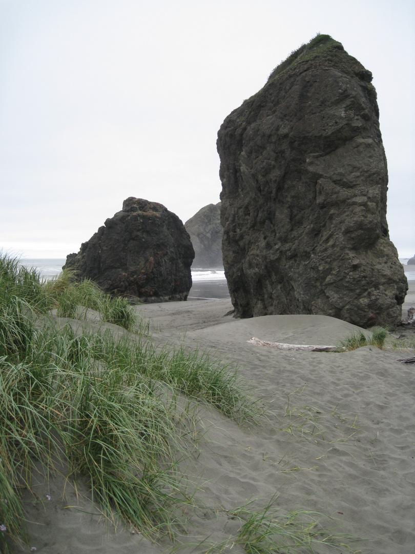 Ein Nebeltag an der Küste von Oregon