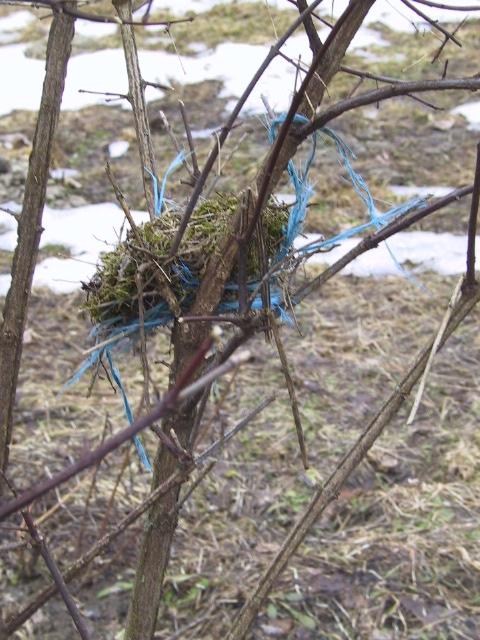Ein Nest bauen...