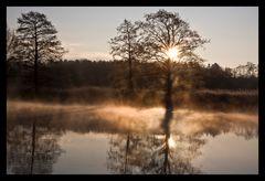 Ein neuer Morgen