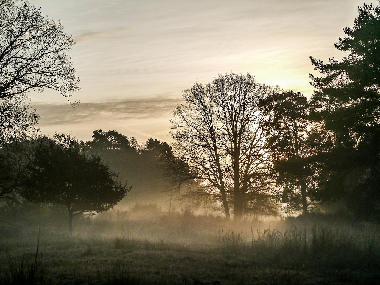 Ein Novembermorgen